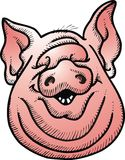 Pig head isolated Stock Photos