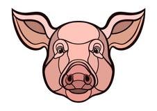 Pig head mascot Stock Photos