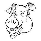 Pig head sketch black and white Royalty Free Stock Images