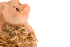 Pig on a heap of coins Royalty Free Stock Photography