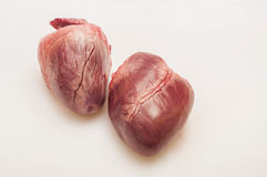 Pig heart. On a white background stock photos