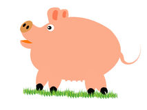 Pig on herb Stock Photography