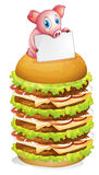 A pig holding an empty signage at the top of the hamburger Stock Image