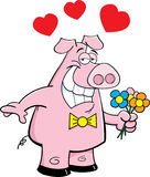 Pig holding flowers Stock Photo