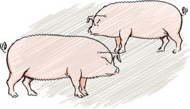 Pig illustration Royalty Free Stock Photos