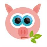 Pig isolated on white Royalty Free Stock Image