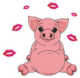 Pig and kisses Stock Photo