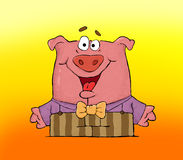 Pig - konferanse Royalty Free Stock Image