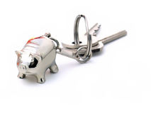 Pig label and keys Royalty Free Stock Photography