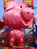 Pig lantern Stock Photography