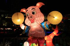 Pig lantern Royalty Free Stock Images