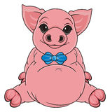 Pig with liitle bow Stock Photography