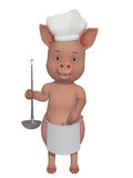 Pig little cook Stock Images