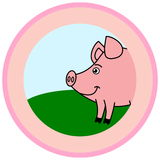 Pig in a logo Stock Photography