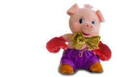 Soft toy pig on a white background. The pig looks suspiciously in boxing gloves Stock Photography