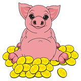 Pig and many cions Stock Photography