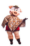 Pig mascot costume dance in poncho Royalty Free Stock Photography