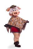 Pig mascot costume dance in poncho Stock Image