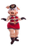 Pig mascot costume dance striptease in hat Stock Image