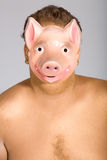 The pig mask stock photography