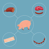 Pig and meat products Stock Image
