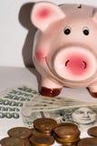 Pig med pengar Royaltyfri Bild