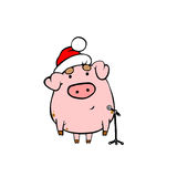 Pig at the microphone. Piggy sings on New Year. Pig at the microphone Royalty Free Stock Photography