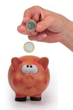 Pig and money Stock Images