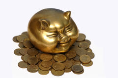 Pig and money_17. A gold pig and money Stock Images