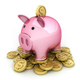 Pig and money Royalty Free Stock Images