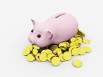 Pig with money Stock Photos