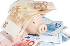 Pig in money. Pink pig in a heap of money isolated on white Royalty Free Stock Photography