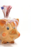 Pig money box Stock Image