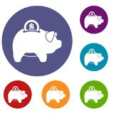 Pig money box icons set. In flat circle reb, blue and green color for web Royalty Free Stock Photos