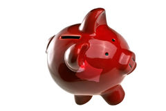 Pig, money, and savings Royalty Free Stock Images
