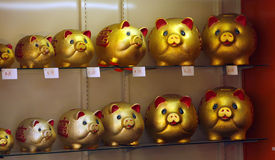 Pig moneybox Stock Photography