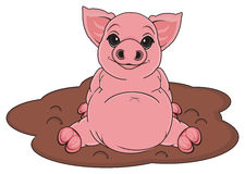 Pig and mud Stock Photography