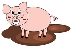 A pig in mud. Illustration Royalty Free Stock Photo
