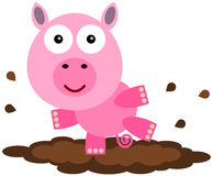 Pig Of The Mud Royalty Free Stock Image