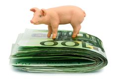 Pig On Euro Banknotes Money Stock Images