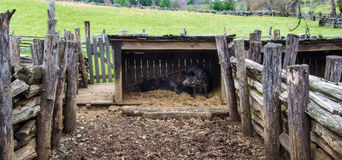 Pig Pen on the Grounds of Booker T. Washington National Monument. Hardy, VA – March 26th: Pig pen located on the grounds of Booker T. Washington National stock images