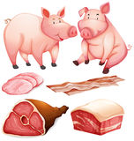 Pig and pig products Stock Photos