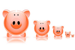 Pig piggy bank Stock Images