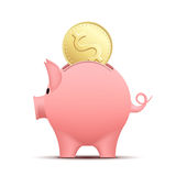 Pig piggy bank. Piggy bank pig with a coin. Stock  illustration Stock Photos