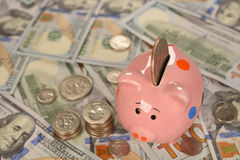 Pig piggy bank Royalty Free Stock Images