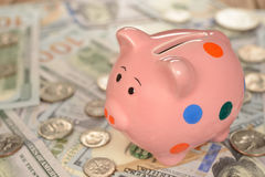 Pig piggy bank. With coins Royalty Free Stock Image