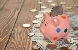 Pig piggy bank. With coins on brown background Stock Image