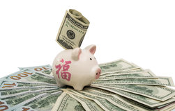 pig piggy bank with dollars Stock Image