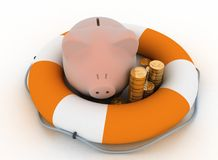 Pig piggy bank is in lifebuoy Royalty Free Stock Photo