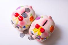 The pig piggy bank. Porcelain painted money pig, piggy bank Stock Photos